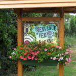 Image de Vernou-sur-Brenne
